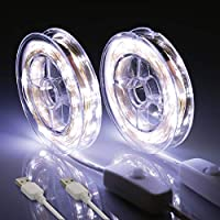 2-Pack 33-Feet 100-LED Waterproof Firefly String Fairy Lights (White)