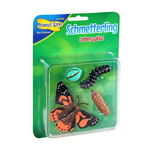HCM Kinzel 48141 Insect Lore - Lebenszyklus Schmetterling aus Kunststoff, bunt
