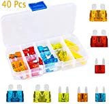 40Pcs Mini/Standard Blade Fuse Assorted Auto Car Truck