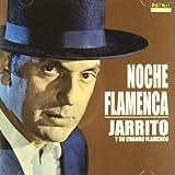 Noche Flamenca (Y Su Cuadro Flamenco)