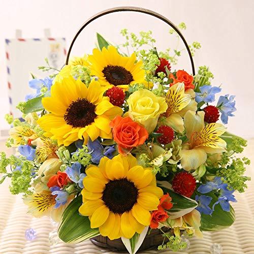 父の日 おまかせ6月のアレンジ【花 生花 ギフト プレゼント アレンジメント ヒマワリ】