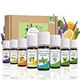 Set de Aceites Esenciales 100% Naturales Bio | Para Humificador Difusor, Aromaterapia | Menta, Eucalipto, Cedro de Atlas, Citronela, Naranja, Limón, Lavandín, Ravintsara | Mearome Fabricado en Francia