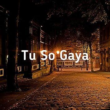Tu So Gaya