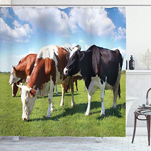 ABAKUHAUS Das Vieh Duschvorhang, Kühe weiden auf Weide, mit 12 Ringe Set Wasserdicht Stielvoll Modern Farbfest & Schimmel Resistent, 175x200 cm, Mehrfarbig