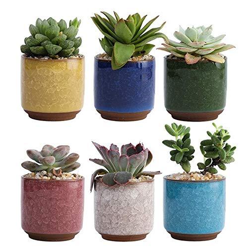 盛世汇众 6pcs cerámica suculento de Planter Pots Color de cerámica Tiesto for el hogar decoración de la Oficina suculento de Planter (Color sin la Planta)