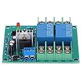 Placa de circuito de protección de altavoz Módulo de alimentación constante de doble canal en componente de retardo de silencio 10A DC12