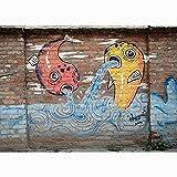 Fondo de fotografía de Graffiti de Arte de Pared de ladrillo, Estudio de fotografía de Fondo de fotografía de Retrato A14 7x5ft / 2,1x1,5 m