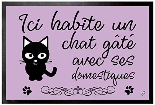 1art1 Chats Paillasson Essuie-Pieds - Ici Habite Un Chat Gâté avec Ses Domestiques (60 x 40 cm)