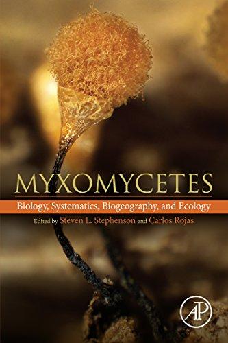 Myxomycetes: Biology, Systematics, Biogeography and Ecology (English Edition)
