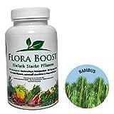 Engrais pour bambou Flora Boost - 100% BIO - pour jusqu'à 500 l d'eau d'arrosage -...