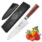 Cuchillo de cocina profesional de 8 pulgadas – 67 capas VG-10 cuchillo de acero Damasco, cuchillo de cocina ultra afilado con mango ergonómico de madera, funda y caja de regalo de belleza