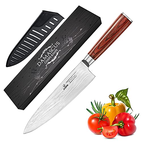 Professional Kitchen 8 inch Chef Knife - 67 Layers VG-10 Damascus Steel Knife,Ultra-Sharp Cooking Knife with Ergonomic Wood Handle, Sheath & Beauty Gift Box