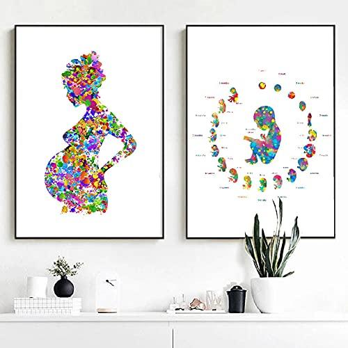 LZASMMVP Mujer Embarazada Arte Lienzo Pintura Cuadros médico obstetra Regalo, Desarrollo embrionario Acuarela Arte Cartel impresión decoración de Pared | 42x60cmx2 Piezas sin Marco