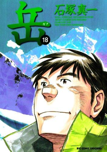 岳(18) (ビッグコミックス)