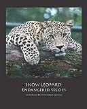SNOW LEOPARD: Endangered Species Wide Ruled 8x10 Notebook Journal