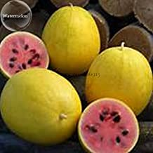 Visa Store 2018 Hot Sale Golden Midget Small Watermelon, 10 Seeds, Yellow Skin Melon with red Meat E3833