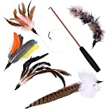 Nabance 6PCS Cat Feather Toys Retractable Interactive Kitten Toys Feather Wand Funny Play Sticks for Pet Cat Teaser