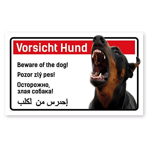PrimeStick Vorsicht Hund Schild 5-sprachig 25x15cm Kampfhund Dobermann