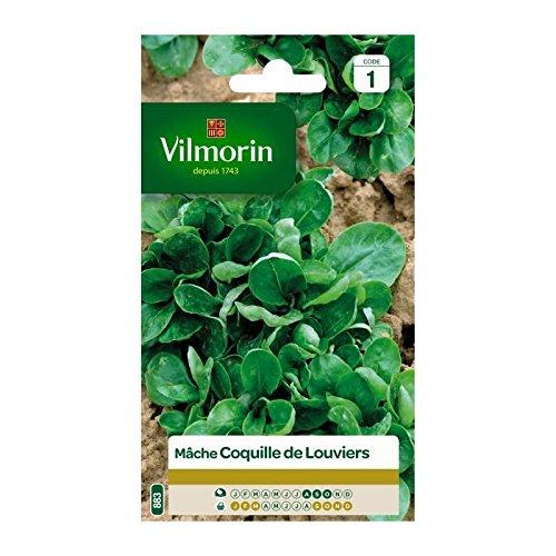 Vilmorin - Sachet graines Mache Coquille de Louviers
