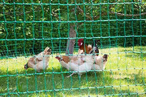 Kerbl 292277 - Rete per pollame, senza corrente, 50 m, a doppia punta, 106 cm, colore: Verde
