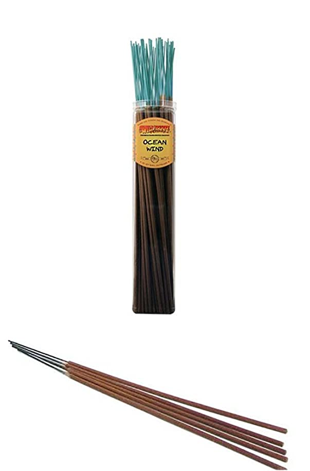 フロント健康避ける海洋風?–?Wild Berry Highly Fragranced Large Incense Sticks
