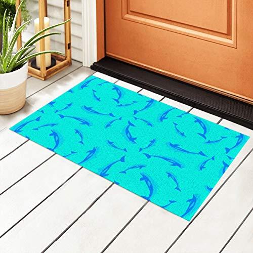 Sage Wod Dolphin Pod Entrance PVC Doormat with Non-Slip Waterproof Backing, Floor Mats for Outdoor Door Kitchen Bathroom Indoor 40 X 60cm