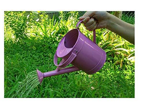 Ding&ng Balkon tin tuinieren gieter, gieter pot, douche waterkoker, 1.5L gieter A2