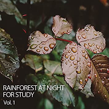 Rainforest at Night for Study Vol. 1