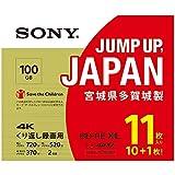 ソニーSONY ビデオ用ブルーレイディスク(11枚パック)11BNE3VZPS2 (BE-RE  3層 2倍速 100GB)