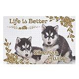 Lolyze Leben ist Besser Hund - Puzzle de 500/1000 piezas, diseño de perro Husky siberiano (200 piezas), color blanco