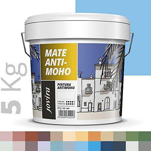 PINTURA ANTIMOHO, evita el moho, resistente a la aparición de moho en paredes, aspecto mate. (5 KG, AZUL CELESTE)