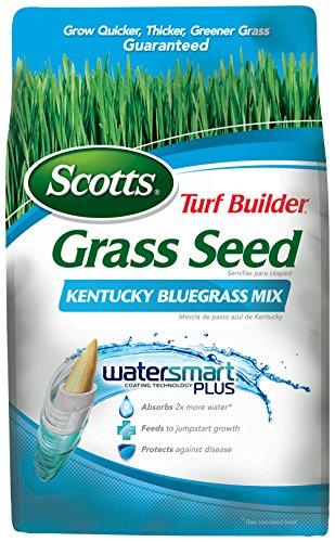 Scotts 18266 Turf Builder Kentucky Blue Grass Seed Mix (6 Pack), 3 lb