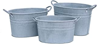 Galvanized Metal French Bucket with Gold Trim by Ashland®  Garden Collection