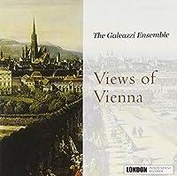 Views of Vienne