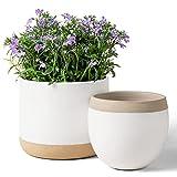 Macetas de Cerámica Blanca para Plantas - Maceteros de Interior de 16.5 + 12.4 cm, Macetas para Plantas con Detalles Beige y Agrietados