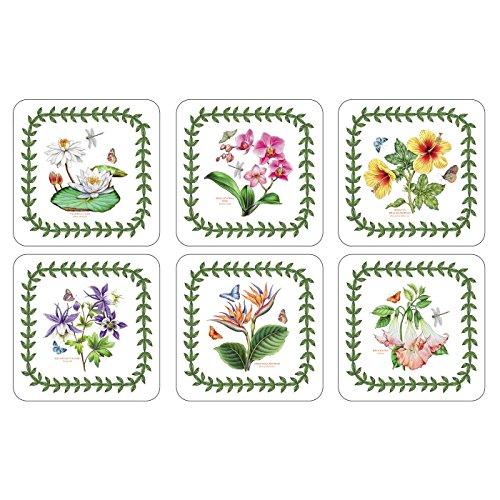 Pimpernel 10,5 cm x 10,5 cm-Medium Exotic Garden-Dessous-de-Verre-Botanique-Lot de 6–Couleur