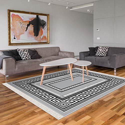 Designer Teppich Modern Wohnzimmer Esszimmer Schlafzimmer Bordüre Hochwertig Meliert Kurzflor bedruckter Silber-Schwarz