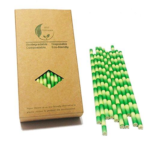 Cannucce ecologiche biodegradabili, motivo bambù, cannucce compostabili da 19,7cm, senza plastica