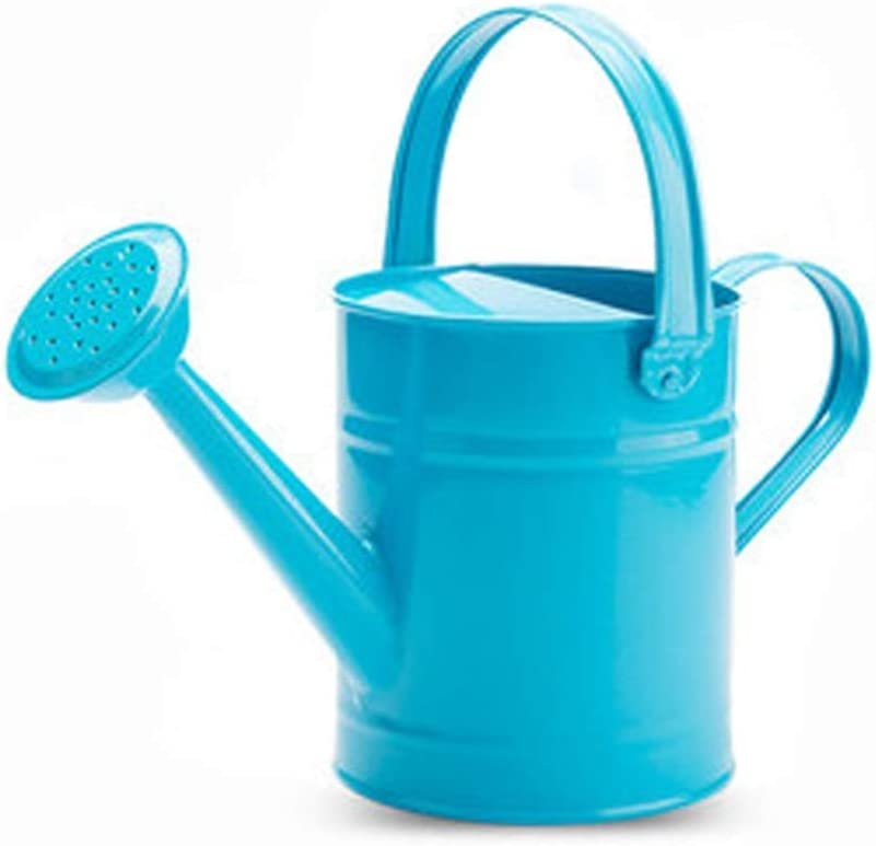 Lsxlsd Watering Can Iron Waterin Large Max 63% OFF Super Special SALE held Capacity -