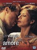Un Viaggio Chiamato Amore by Stefano Accorsi