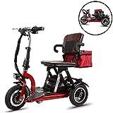 JJGS Scooter Electrique Handicapé - 3 Roues Mobylette Senior Handicapé,Moteur...