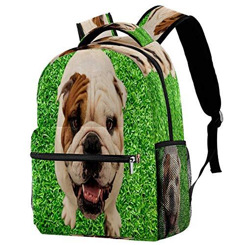 Border Collie - Mochila escolar para viajes, estilo informal, estampado 6 (Multicolor) - bbackpacks004