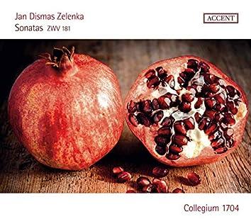 Zelenka: 6 Sonatas, ZWV 181