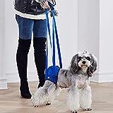Arnés de elevación trasero para perros con discapacidad para perros con problemas de rodilla y mala estabilidad (S)