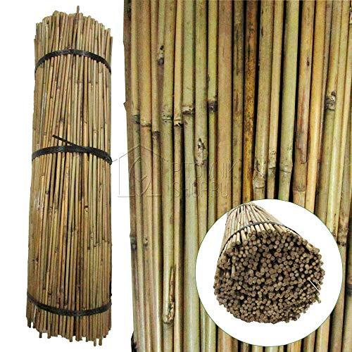 WoodBi Bambusrohr Tonkinstäbe Bambusstäbe - Kletterhilfe für Pflanzen - Rankhilfe Bambus (91cm x Ø 8-10 mm) (50)