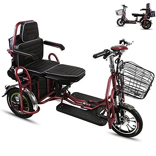 Movilidad de la scooter de doble asiento, Mobility Scooter de movilidad eléctrica ligera 3 ruedas para los ancianos, discapacitados y adultos, soporte de 120 kg de peso, 35-55 km de largo alcance