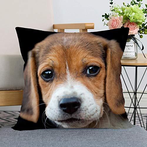 Funda de Almohada Funda de cojín Beagle Perro Animal Funda de Almohada Dormitorio Oficina en casa Decoración Almohada Cremallera Cuadrada Tela Suave Fundas de Almohada de satén Artículos para el
