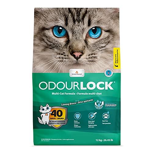 Intersand - Lettiera OdourLock per gatti, 12 kg