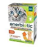 Enerbiotic - Bevanda Energizzante Prebiotica per Gatti - per Problemi Intestinali, Ripristina la Normale attività della Flora Intestinale - Elevata Appetibilità - 4 Buste Monodose da 60Ml