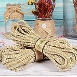 HHTC Personalidad Cuerda de cáñamo Natural, Cuerda Doble Color, Cuerda de cáñamo, la decoración del Partido Festivo, DIY Hecho a Mano de Hilo de Yute Favor, 1 Empate Mascota (Color : 10m)